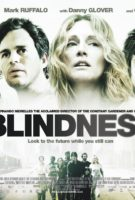 Blindness Banner