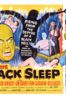 The Black Sleep - Banner