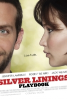 Silver Linings Playbook Banner