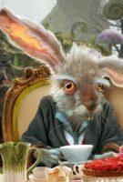 Alice in Wonderland - Insane Rabbit